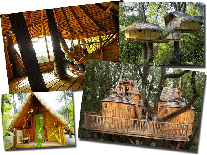 Cabanes perch es dans les arbres - Camping dans son jardin ...