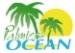 Palmiers Océan