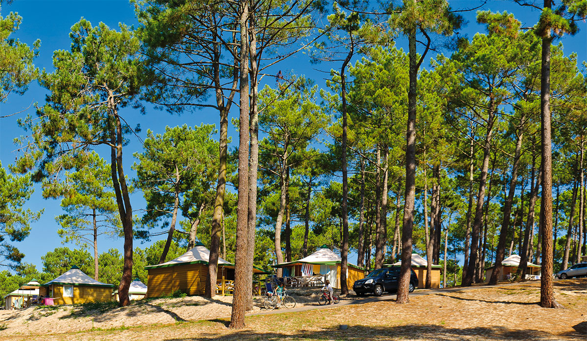 Camping - Le Vivier - Biscarrosse - Aquitaine - France