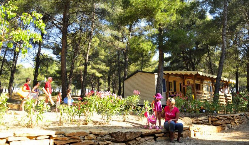 Camping   Saint Cyr Sur Mer   Provence Alpes Côte D