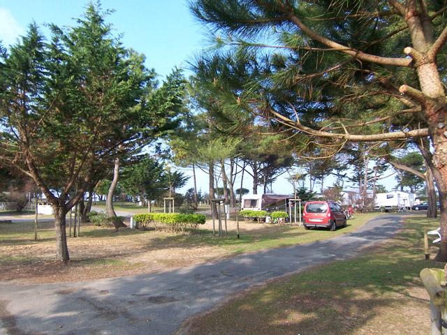 Camping Le Bois Plage En Ré - Camping Antioche 4étoiles Le Bois Plage en Ré Toocamp