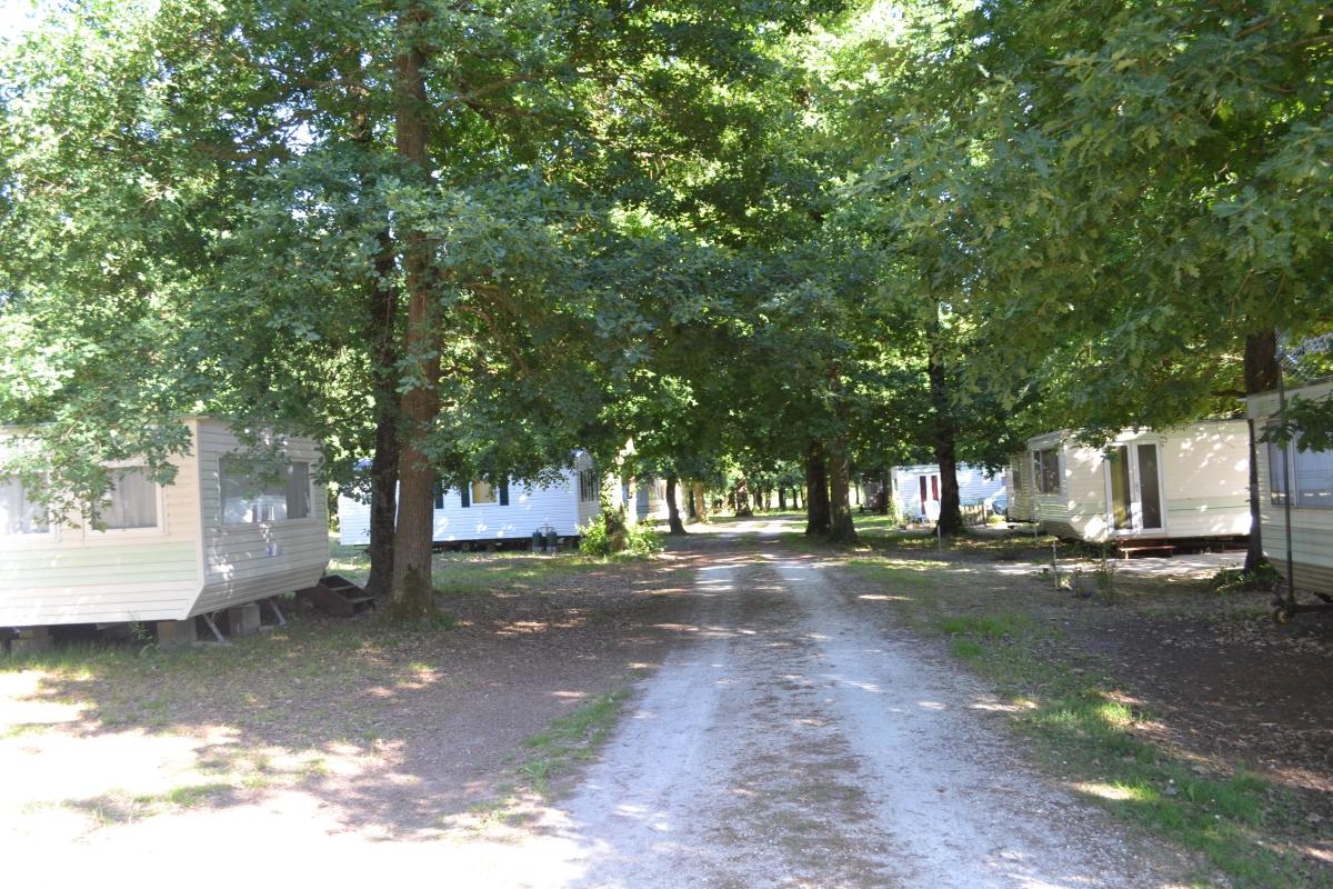 Camping  Sémussac  PoitouCharentes  Bois de la Chasse