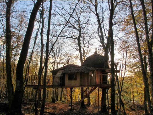 Camping Cabanes du Bois Clair 1étoiles Ranchot Toocamp # Cabane Du Bois Clair