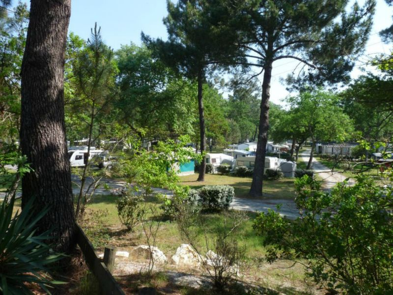 Camping - Fontaine Vieille - Andernos-les-Bains - Aquitaine - France