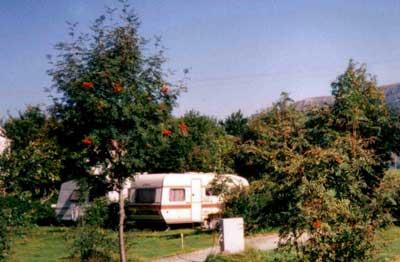 Camping La Plage Verte 2 étoiles - Le Mont-Dore - Toocamp
