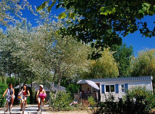 Camping Le Bois D Amour - Camping Le Bois d'Amour 3étoiles Quiberon Toocamp