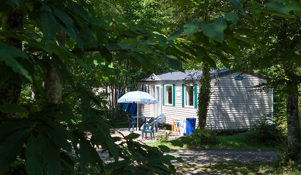 Camping Bois De Pleuven - Camping Le Bois de Pleuven 4étoiles Saint Yvi Toocamp