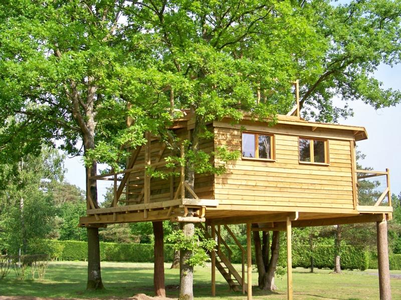 Camping le nid dans les bruy res 1 toiles f re en - Cabanes dans les arbres construction deco ...