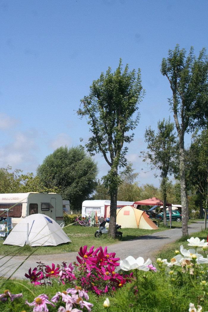 Camping les catalpas 3 toiles saint georges de didonne for Camping poitou charente piscine