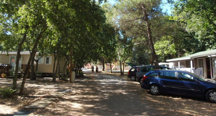 Camping - Sorède - Languedoc-Roussillon - Les Micocouliers