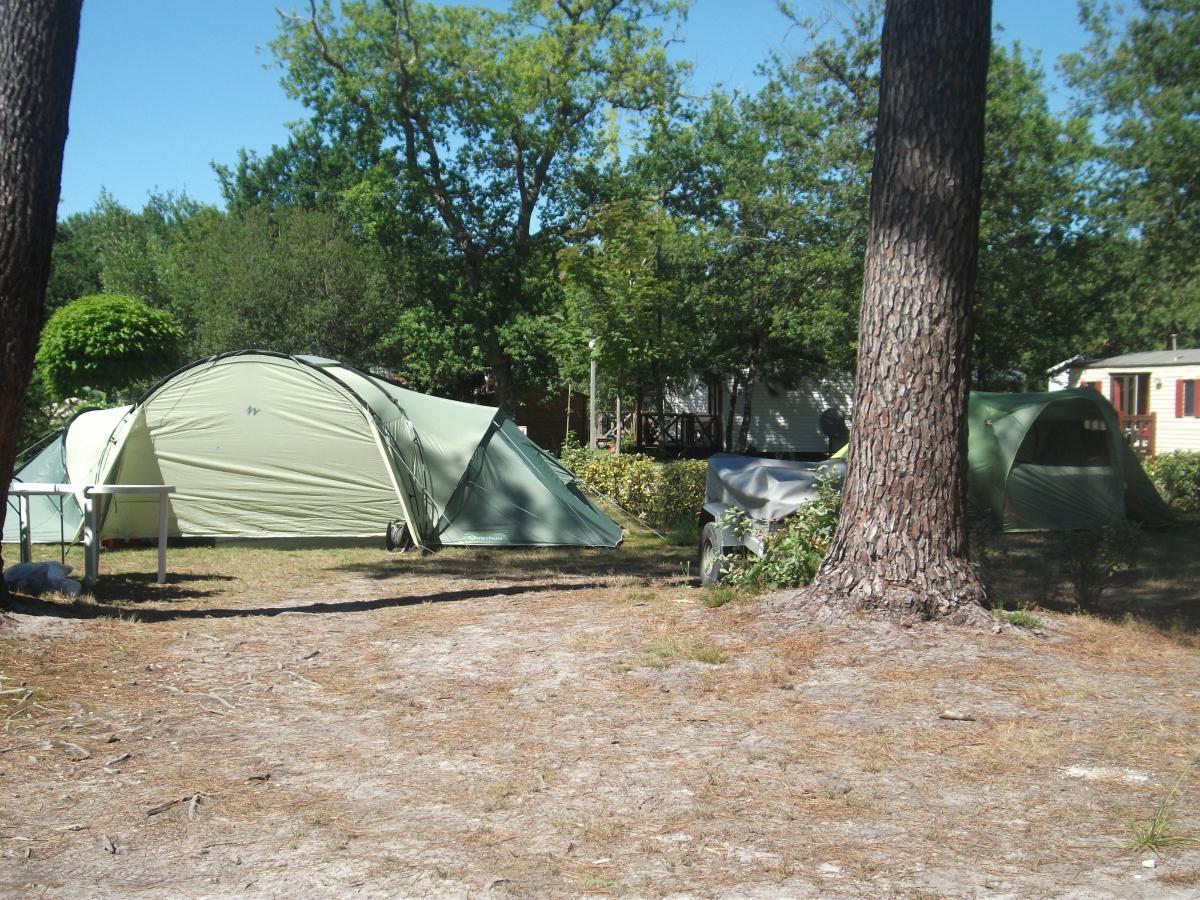 Camping Bois Du Cé - Camping L'oree Du Bois 3étoiles Hourtin Toocamp