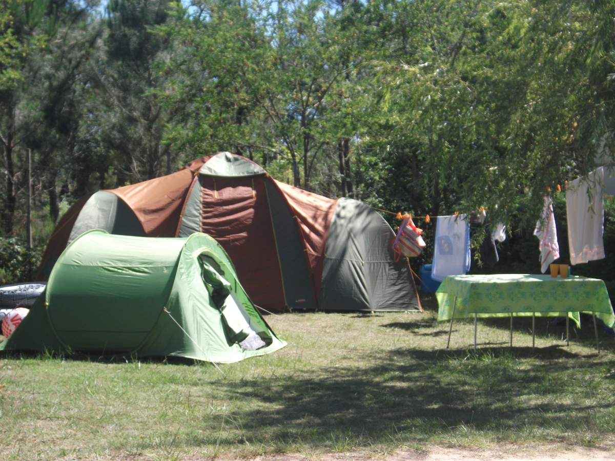 Camping Loree Du Bois 3 étoiles  Hourtin  Toocamp ~ Camping Loree Du Bois