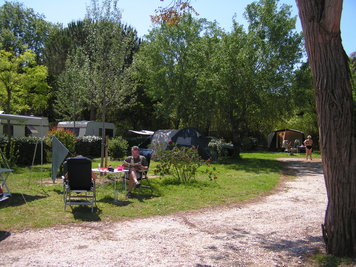 Camping le lavandou bord de mer toocamp - Le lavandou camping avec piscine ...