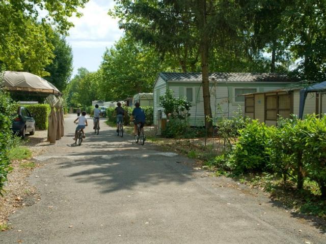 Camping l 39 oiselon 3 toiles pont d 39 ain toocamp for Garage ms auto pont d ain