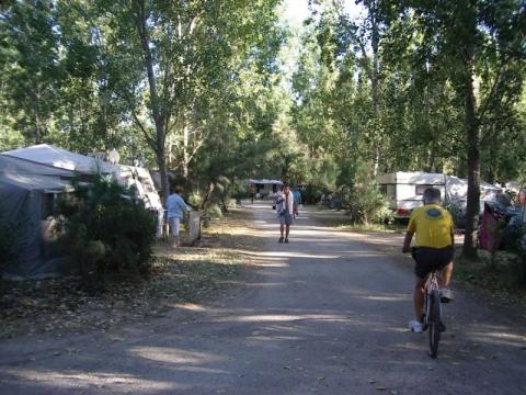 Le Lamparo - Camping - Sainte-Marie