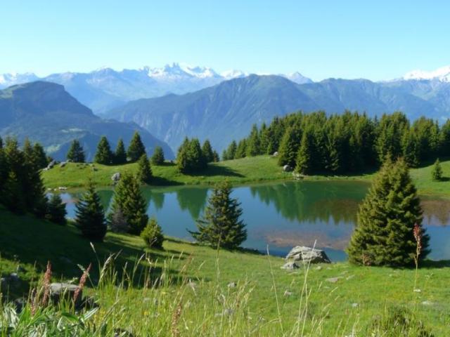 Camping le lac bleu 2 toiles saint r my de maurienne for Camping le bois joli st martin sur la chambre
